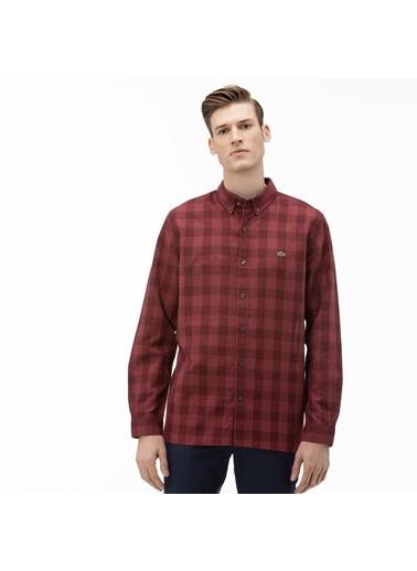 Lacoste Erkek Regular Gömlek CH0145.1PA Mor